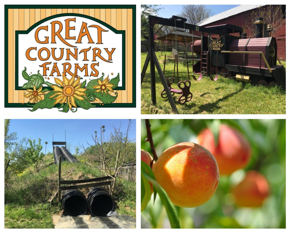 Great Country Farms Summer Admission & PEACH PICKING!!