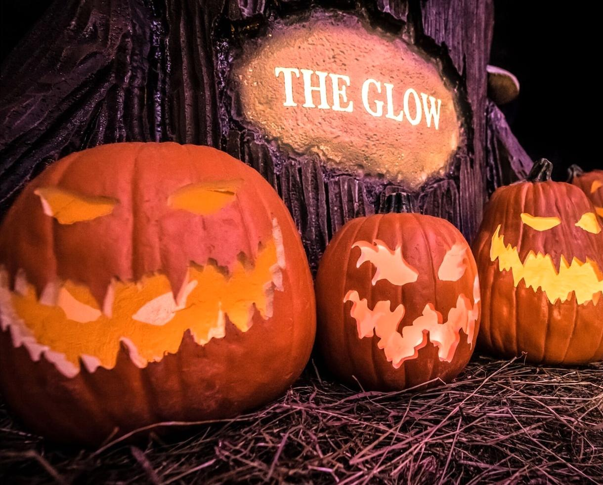 deal: 20% off the glow jack-o-lantern experience | certifikid
