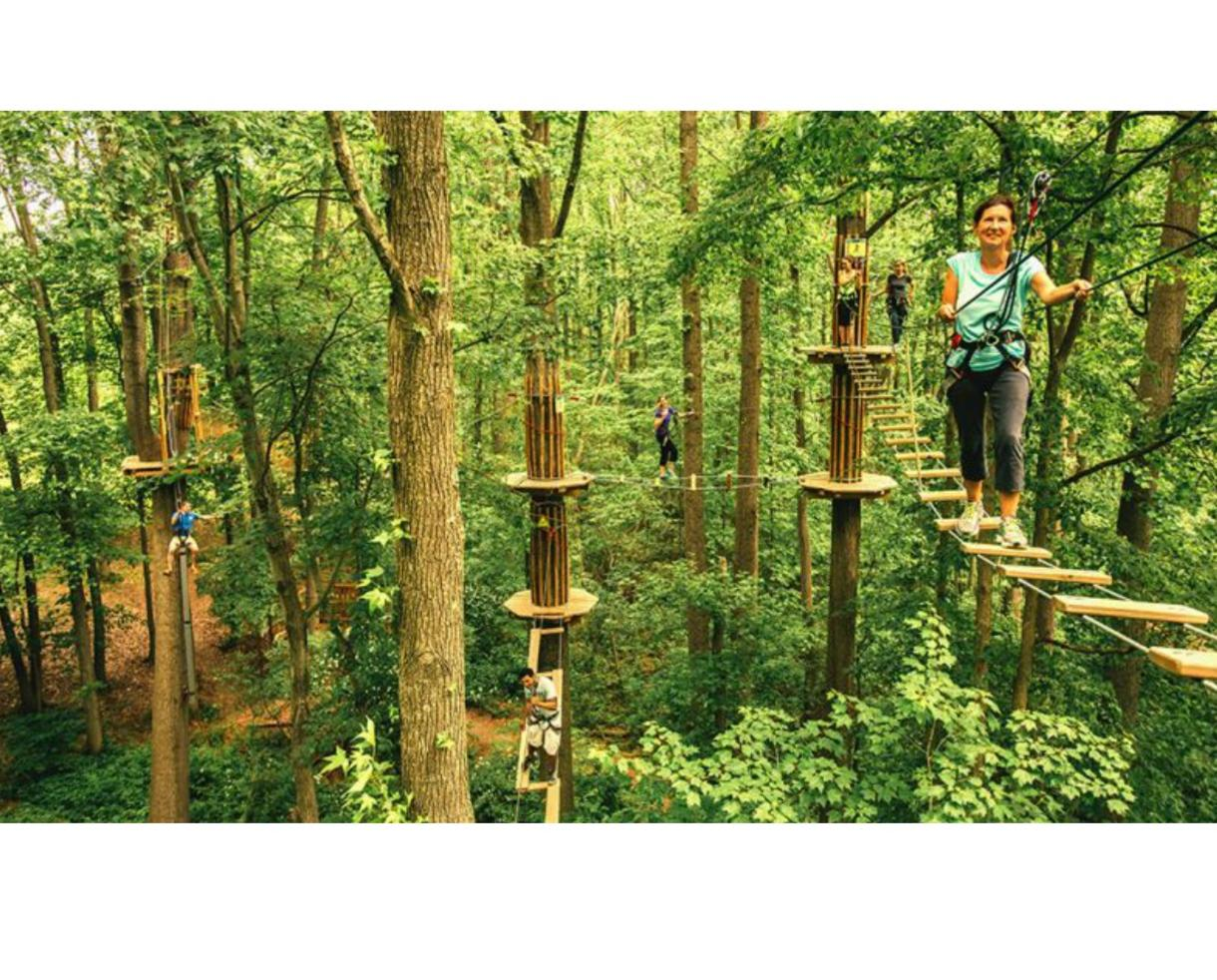 FLASH SALE! $23+ for Go Ape Treetop Junior or Treetop Adventure - BRAND NEW Springfield, VA Location + 12 Other U.S. Locations!