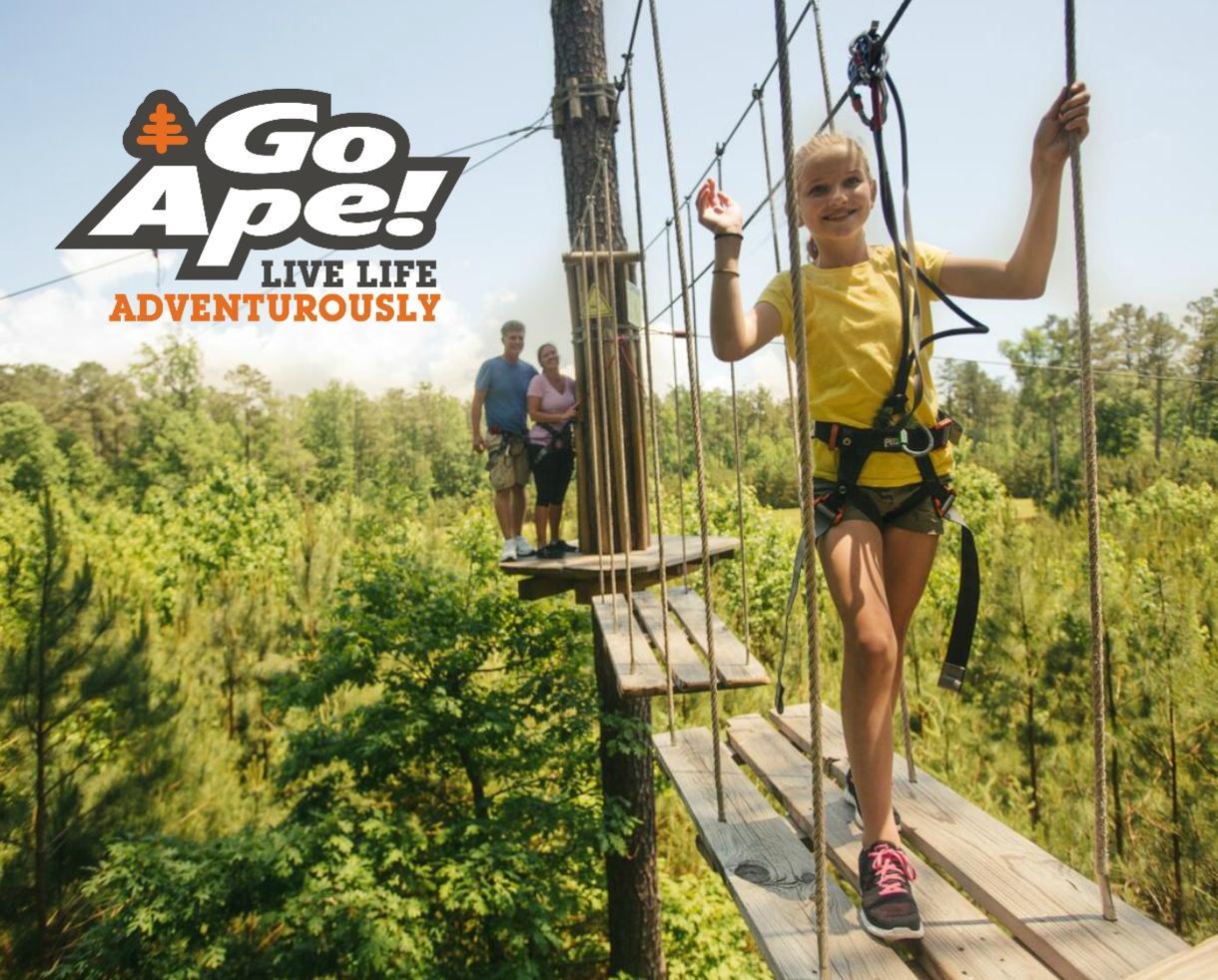 $23+ for Go Ape Treetop Junior or Treetop Adventure - BRAND NEW Springfield, VA Location + 11 Other U.S. Locations!