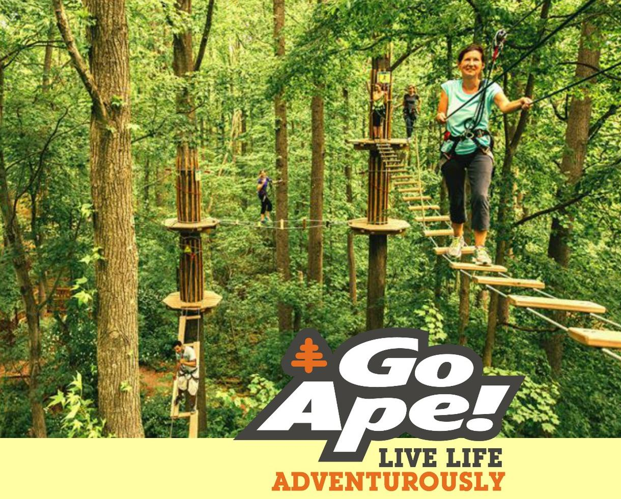 Go Ape Rockville Treetop Adventure Course Admission
