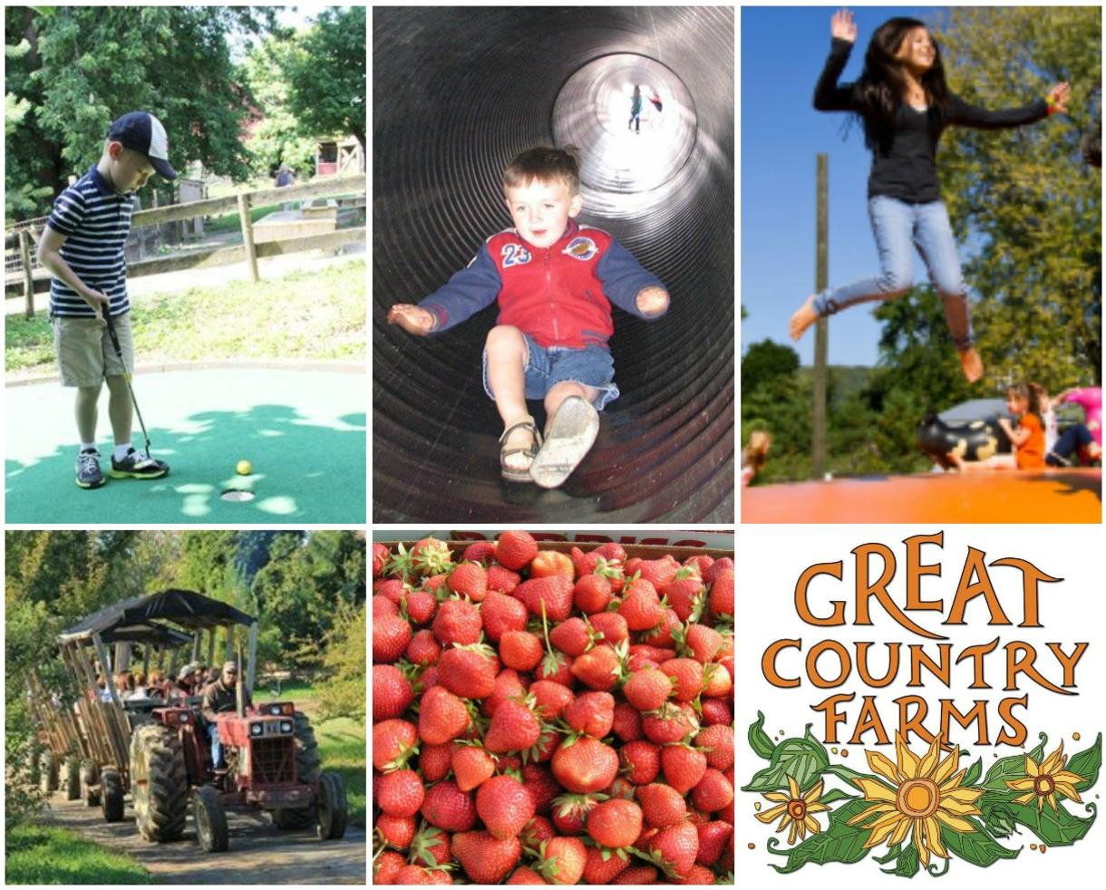 $5 for Great Country Farms Admission - April 3rd - May 12th (60% Off)