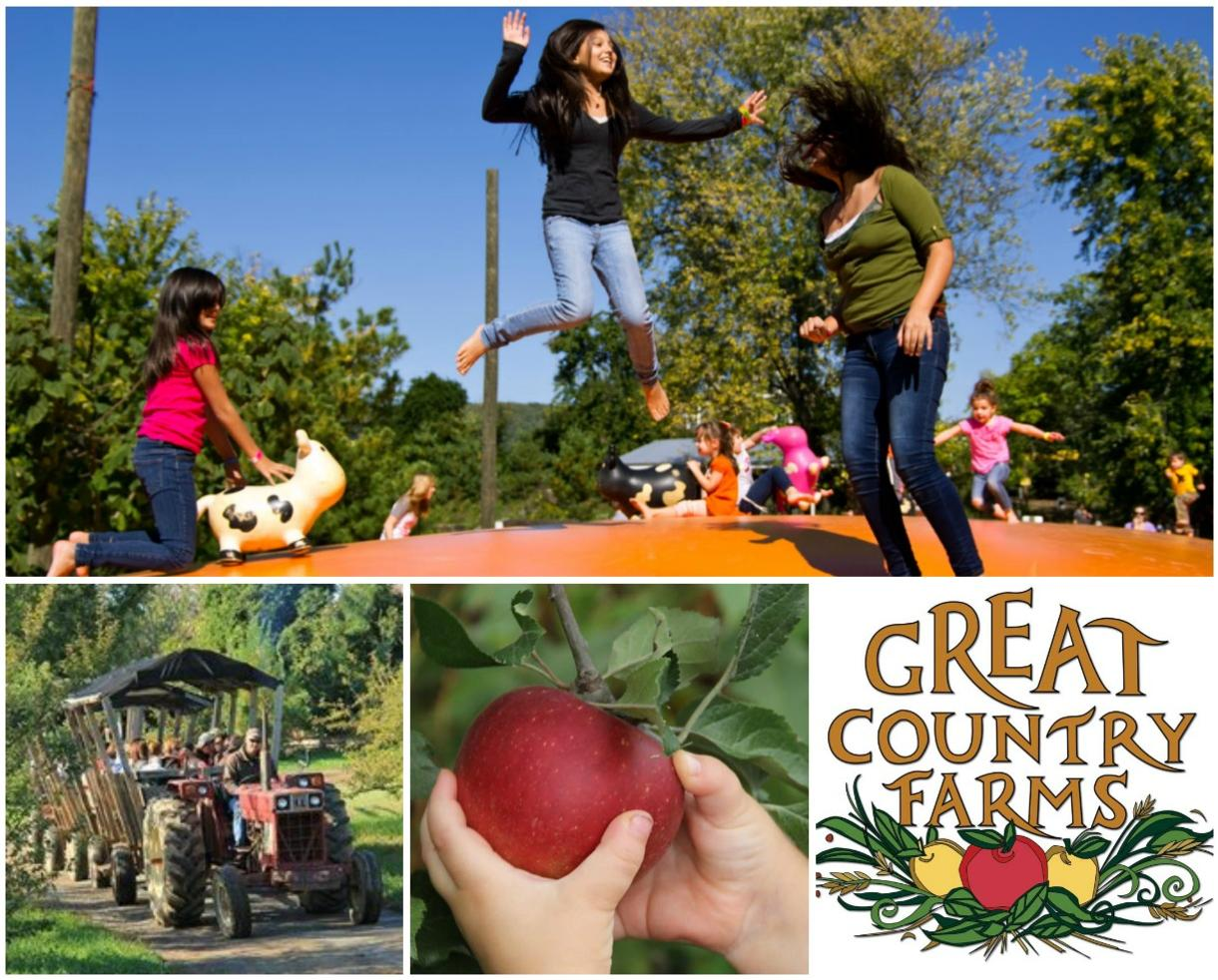 $7 for September Weekday Great Country Farms Admission & APPLE PICKING (44% Off!)