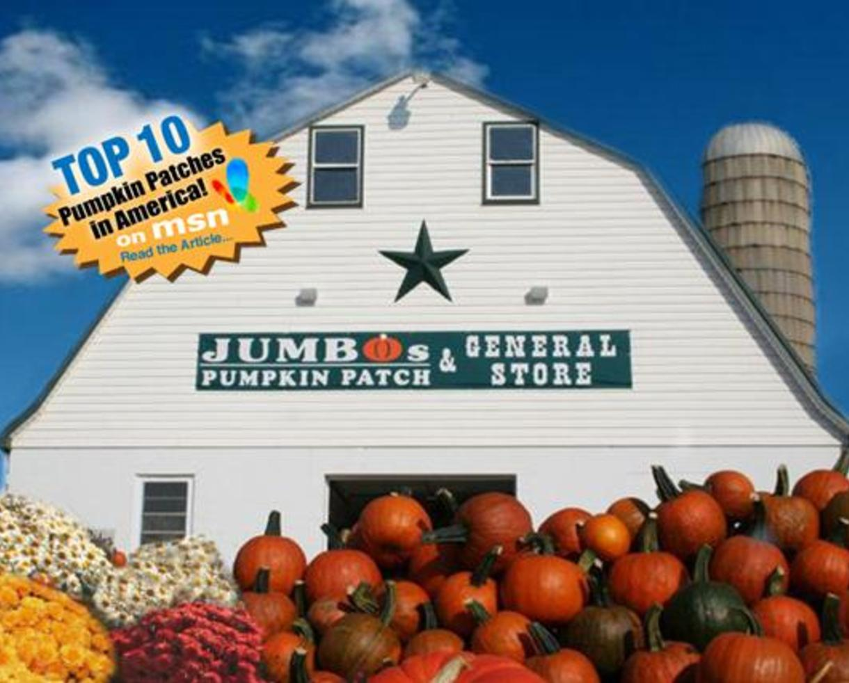 $10 for 4-Pack of Tickets to Jumbo's Pumpkin Patch Fall Festivities (50% Off!)
