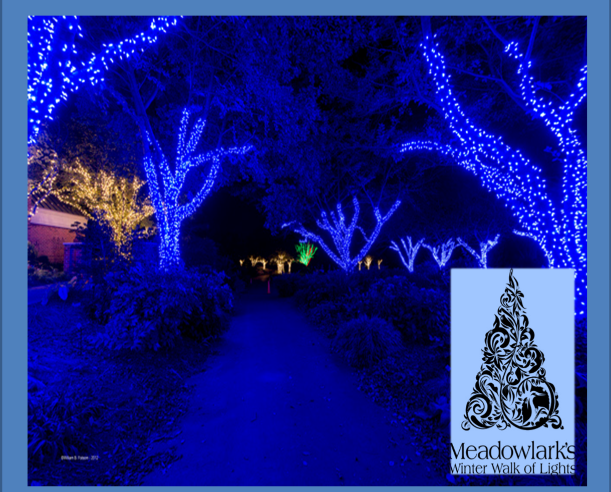 $12 for Meadowlark's Winter Walk of Lights Weekday Adult + Child Ticket - Nov. 19th thru Dec. 6th in Vienna (48% Off)
