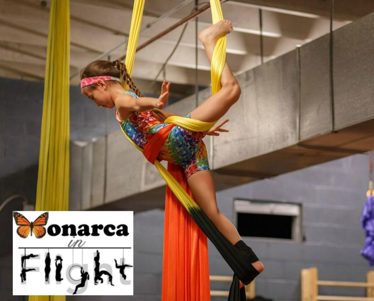 $150 for 90-Minute Birthday Party for up to 10 Kids at Monarca in Flight - Ages 6-12 - Falls Church ($50 Off)