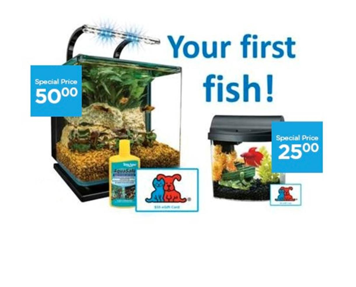 Aquarium Starter Kit From Petco Includes Free Shipping