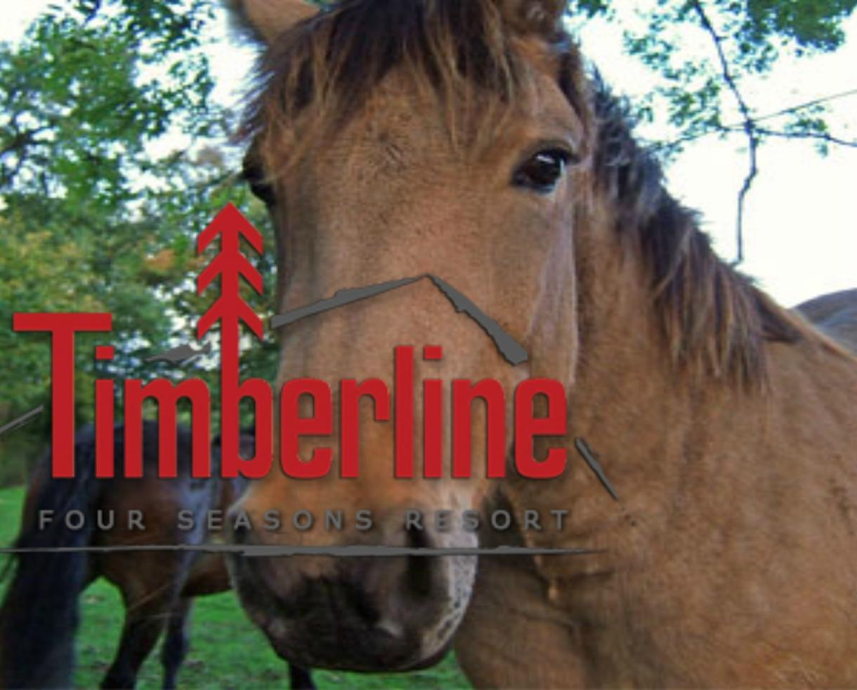 $259 for 2-Night Family Getaway + 4 Horseback Trail Rides at Timberline Four Seasons Resort in WV - VALID ANY DAY ALL SUMMER! (35% Off)