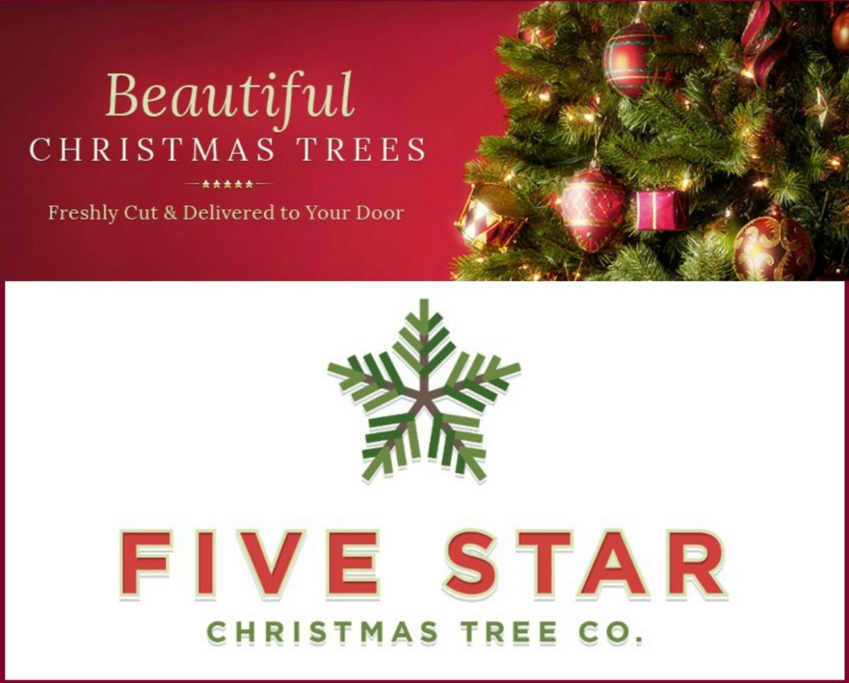Five Star Christmas Tree | Home Design Inspirations