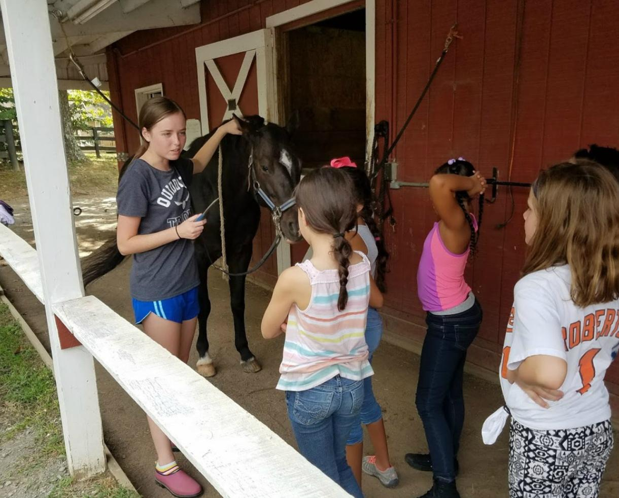 $150 for Twin Oaks Riding Academy Young Rider Camp for Ages 5-12 - Leesburg ($49 Off)