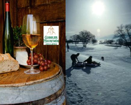$28 for Winery Visit, Tasting & Tubing for Two Adults at Cobbler Mountain Cellars (50% off)