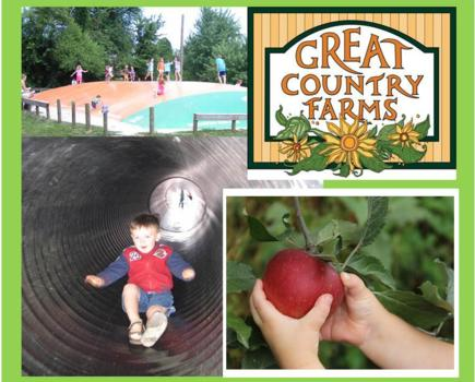$5 for Weekday Great Country Farms Admission & APPLE PICKING (59% Off!)