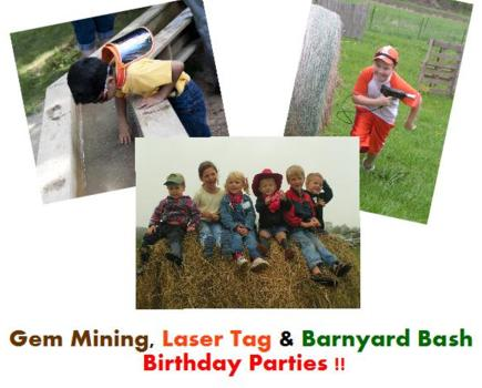 $135 for Gem Mining, Laser Tag or Barnyard Bash BIRTHDAY PARTY - Up to 15 Kids + 15 Adults (50% Off!)