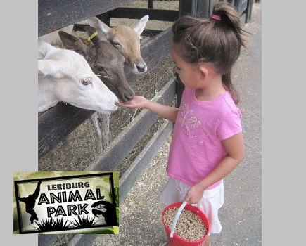$9 for Winter Admission to Leesburg Animal Park for 1 Adult & 1 Child (Up to $21 Value!)