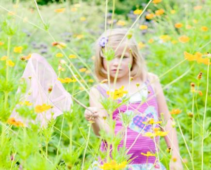 $10 for FLOWER PICKING & BUTTERFLIES at Ridgefield Farm - Harpers Ferry (50% Off)