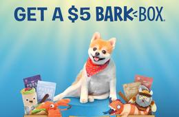 80% Off Your First BarkBox - Dog Toys, Treats & Chews Delivered to Your Door
