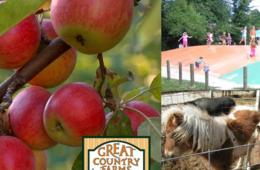 $6 for Great Country Farms Admission - PEACH & APPLE PICKING !!