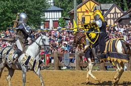 Maryland Renaissance Festival - FREE Admission for Kids!