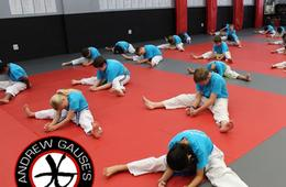 Andrew Gause's Martial Arts Camp