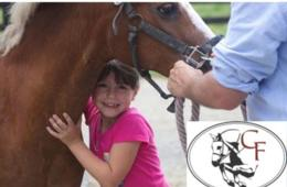 $180 for Horse Lovers Riding Camp at Cavallo Farm for Ages 5-10 in Leesburg ($250 Value - 29% Off)