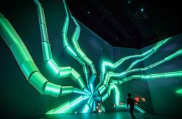 Admission to ARTECHOUSE-DC's New Nature Exhibit