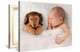 $2.99+ for 8x12, 16x12 or 20x16 Custom Photo on Canvas by Picanova (Up to 94% Off)