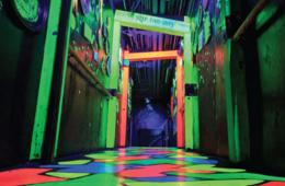 Amazing Chicago's Funhouse Maze on Navy Pier - Admission + Game Play