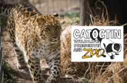 $16 for 1 Adult and 1 Child Weekday Admission to the Catoctin Zoo (50% off)