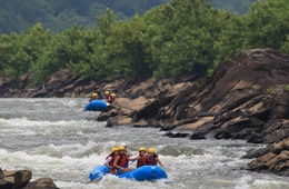 Family-Friendly Rafting or Kayaking Trip on the Potomac River