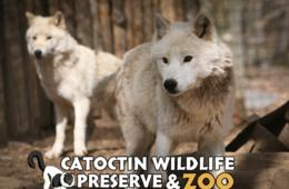 $99 for Annual Family Membership to the Catoctin Zoo in Thurmont ($174 Value - 44% Off)