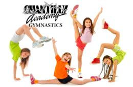 $177 for Chantilly Academy Gymnastics Camp for Ages 3+ in Chantilly ($250 Value - 30% Off)