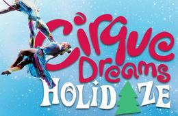Cirque Dreams Holidaze at Toyota Oakdale Theatre