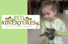 2 Admissions to EcoAdventures' Jungle Express OR Open Play