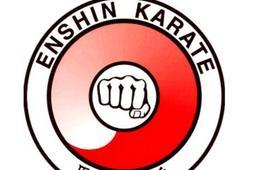 Enshin Karate Birthday Party