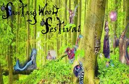 CHILD Weekend Pass Ticket to FantasyWood Festival with Cotton Candy Spiderweb
