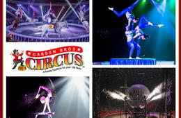 Adult Ticket to Garden Bros Circus: South Florida - Nov. 5 - 18, 2018