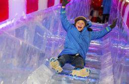 ICE!® at the Gaylord National Resort