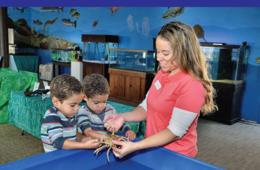 $4 for Admission to The NEW Glen Echo Park Aquarium in Glen Echo (34% Off)