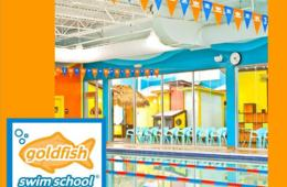 $120 for NEW! Goldfish Swim School in Columbia - SIX SWIM LESSONS - $25 Deposit Paid Now (29% Off!)