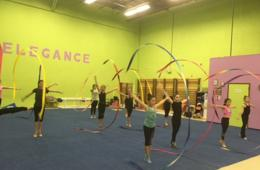 Elegance Rhythmic Gymnastics Camp