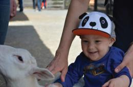 $16 for 1 Adult & 1 Child Admission to Leesburg Animal Park (31% Off - $23 Value)