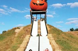 Early Bird Ticket to Pumpkin Village Fall Fest at Leesburg Animal Park