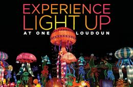 Youth Admission to LightUp Fest at One Loudoun