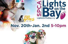 LIGHTS ON THE BAY at Sandy Point Park - Admission for One Car + 2 Pairs of 3D Glasses