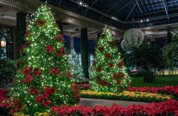 Longwood Gardens Holiday Getaway at the Hilton