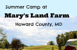 Mary's Land Farm Camp
