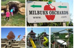 Milburn Orchards Big BackYard Family Fun + Summer Harvest Party Pancake Breakfast - Elkton, MD ($6 Off!)