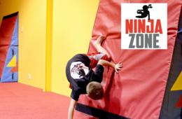 NinjaZone 12-Week Fall Classes at All Pro Gymnastics