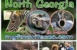 One Wildlife Package Admission at the North Georgia Zoo and Petting Farm
