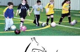 $99 for 7 Quickfeet SPRING Soccer Sessions for Ages 2-6 - MD, DC & VA Locations! ($139 Value - 29% Off)